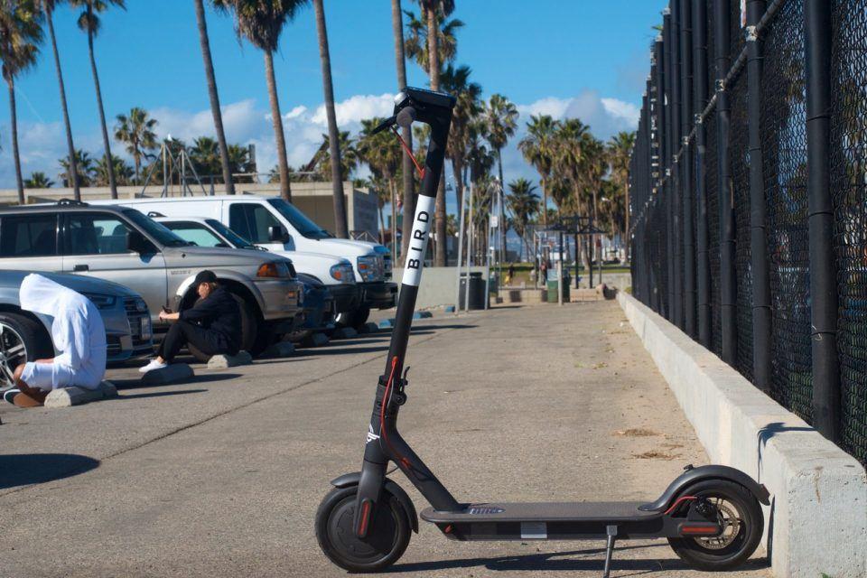 Bird kiralık elektrikli motosikletler için 100 milyon dolar daha yatırım aldı